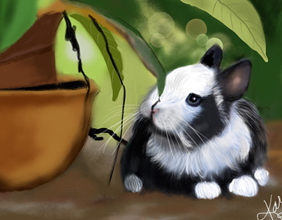 A little garden helper