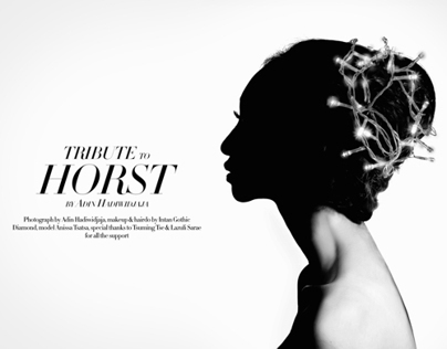 Tribute to Horst