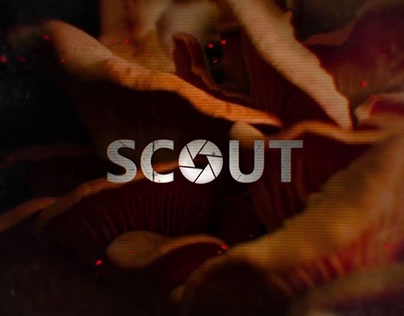 """Scout"" Main Titles"
