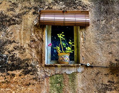 Window blind