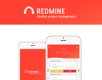 Cube Sheet / Redmine organizer