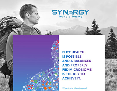 Synergy Landing Page