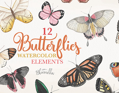 Butterfly Watercolor Clipart on Creative Market