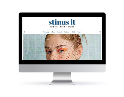 Stinus It - Website Design