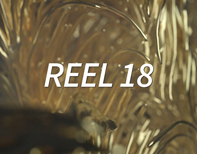 The Reel 2019