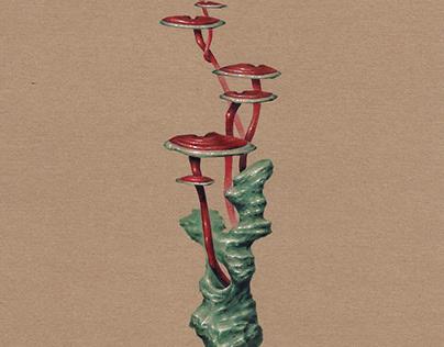 The symbol of longevity - Stone & Ganoderma lucidum