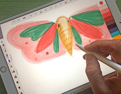 KIDS COSTUMES/ butterfly wings