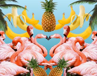 Birds & Melons