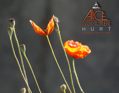 Alice Scooter, Logo and free cover of Hurt