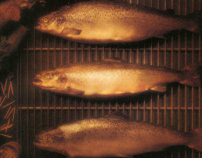 Walden Smoked Trout