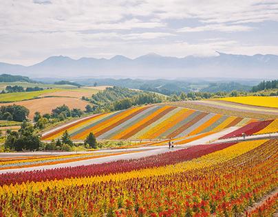 Hokkaidō, Japan   Photography