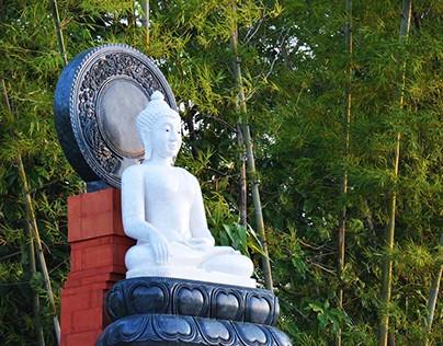 Maidstone Buddhist Group, rebranding