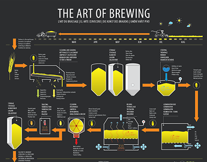 Infographic: brewing process explained in 5 languages