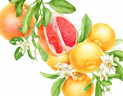 Watercolor citrus