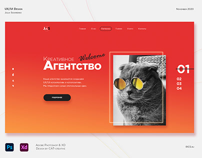UX/UI Design Cat