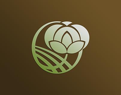 Diseño de marca_CÍRCULO TRECE