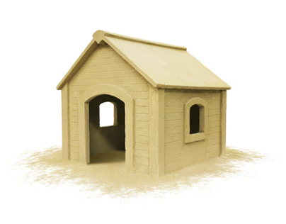 Beach Dog House