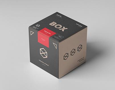 Carton Box Mock-up 100x100x100
