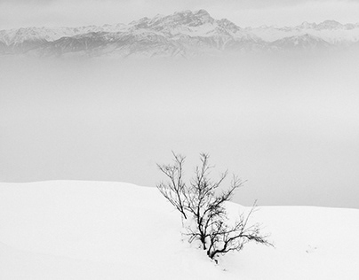Kashmir in Winter