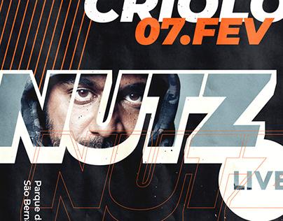 Nutz LIVE Logo Design & Visual Identity