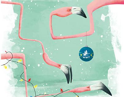 Flamingo Illustration - WWT