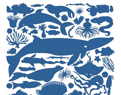 Sea Animals of the Pacific Northwest