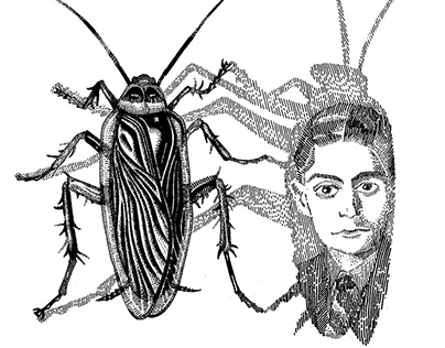 Insects' Secrets