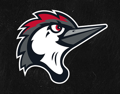 Fayetteville Woodpeckers // MiLB Brand Identity