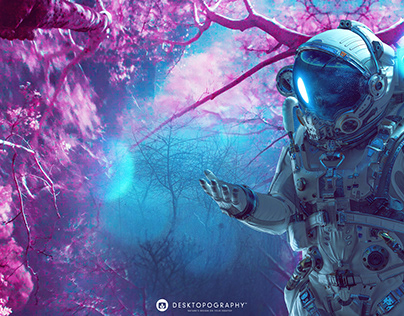 Desktopography 2020 - ILLUSION