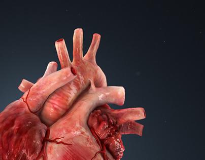 3d illustration of a human heart.