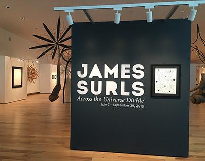 Jame's Surls Exhibit