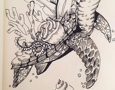 Sandy - The Sea Turtle