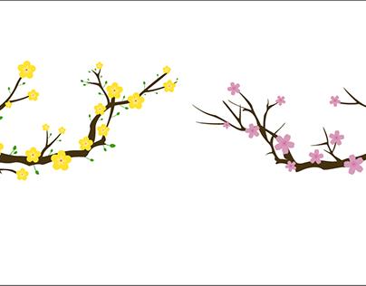 ASM - Motion Graphic