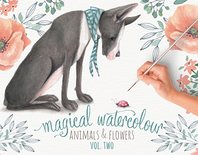 Magical watercolour animals & flowers: vol 2