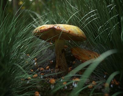 Nature CGI