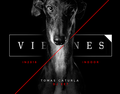 GALGO - Flyers