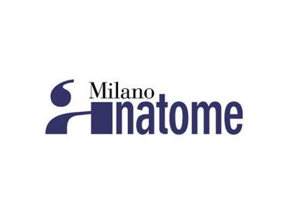 Anatome Milano Logotype