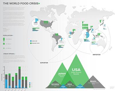 World Food Crisis Infographic