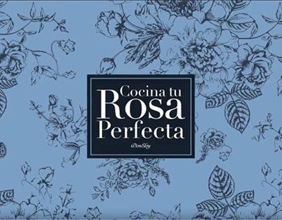 La Rosa Perfecta - Don Eloy