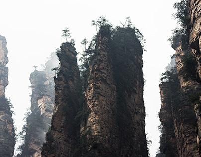 Zhangjiajie National Forest Park Tour