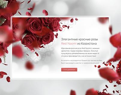 Website design of florist company