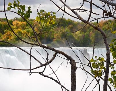 My View of Niagara