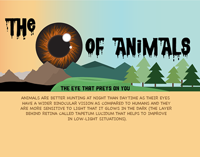 The Eye Of Animals