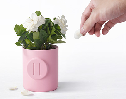Piggy Flowerpot