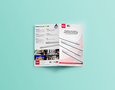 MSI brochure