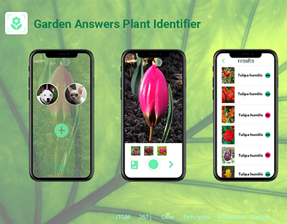 """Garden Answers"" Plant Identifier App UX research"