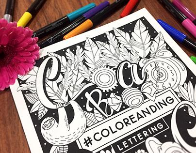 Coloreanding | Colorbook. Vergara y Riba Editoras
