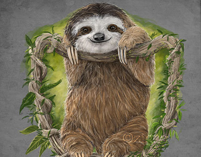 Sloth for Zigze