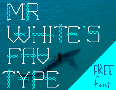 WAVE ME IN - Free Font