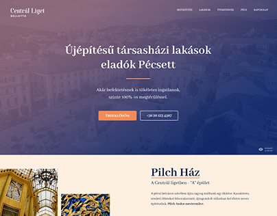 Centrál Liget - website design concept